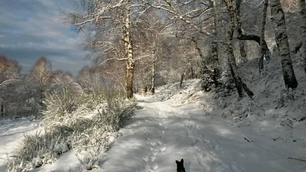 E' arrivata la neve (inserita in galleria)