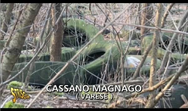 """Il """"bosco delle gomme"""" a Cassano Magnago (inserita in galleria)"""