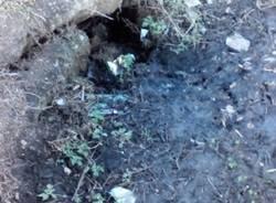 mornera rifiuti degrado (per gallerie fotografiche)