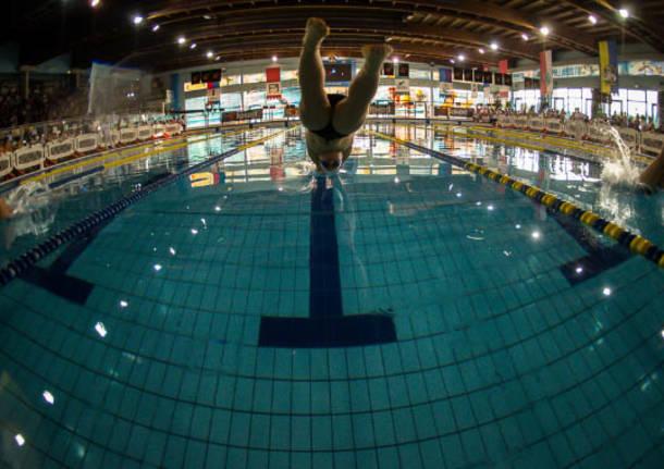 piscina manara 2014 tuffo nuoto
