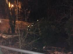 Vento: alberi bloccano la strada (inserita in galleria)
