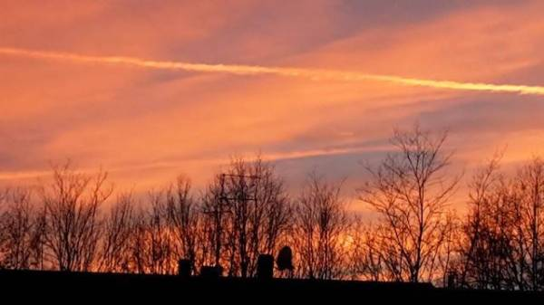 I tramonti dei lettori (inserita in galleria)