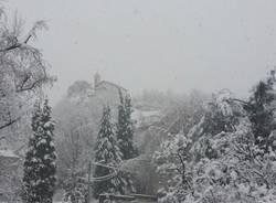 La neve dei lettori 3 (inserita in galleria)