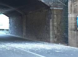 Cadono calcinacci al ponte di via Gasparotti