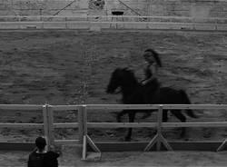 """Il documentario """"Saga"""" di Paolo Boriani"""