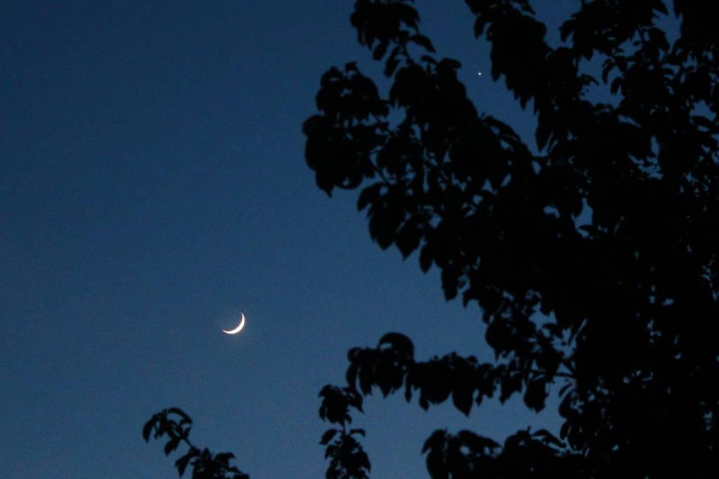 Luna serale