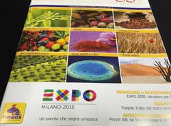 Expo2015 tigros