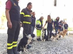 protezione civile unità cinofile e vigili del fuoco
