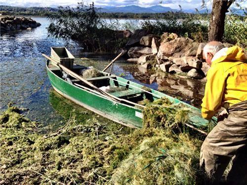 pesca cazzago brabbia