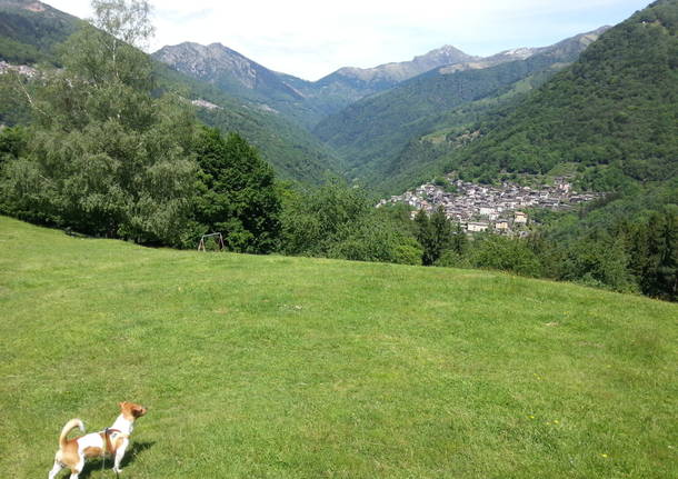 panorama su Curiglia con Monteviasco