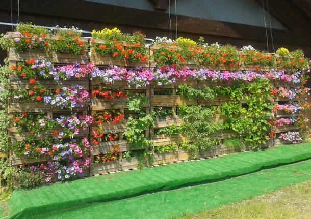 Come costruire un giardino verticale - Costruire un giardino ...