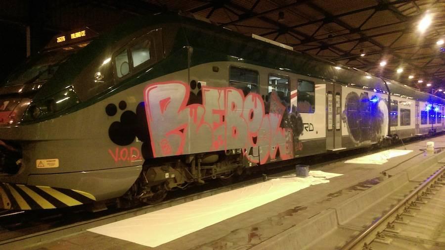treno trenord graffiti