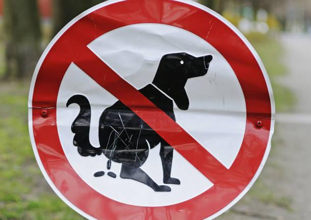 Cani, ora basta!