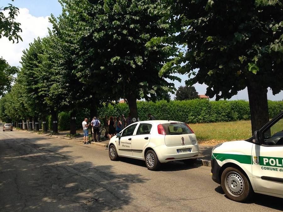 La protesta per gli alberi da abbattere a San Macario
