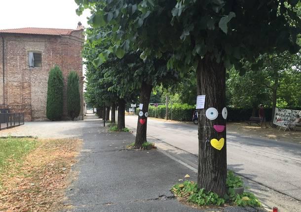 samarate san macario alberi tigli
