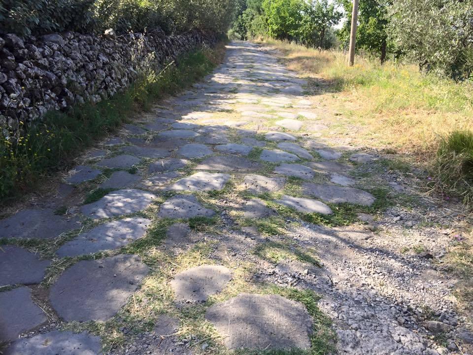 Via Francigena, 17esima tappa: da Bolsena - Montefiascone