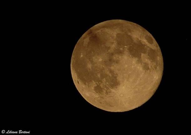 """Blu moon"""
