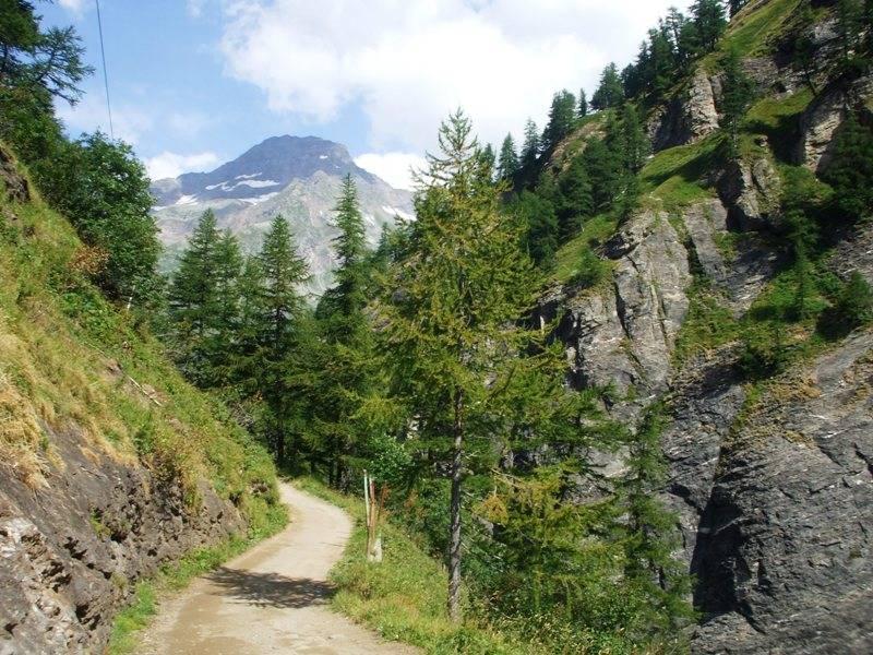 Verso l\'Alpe Veglia...