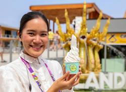 festa del gelato, expo