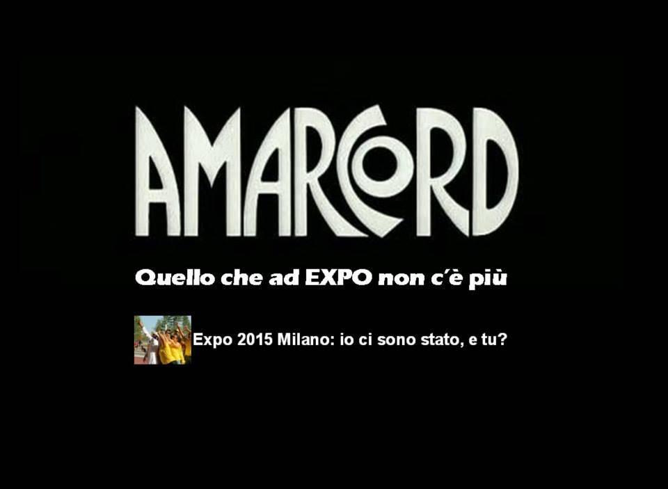 amarcord expo