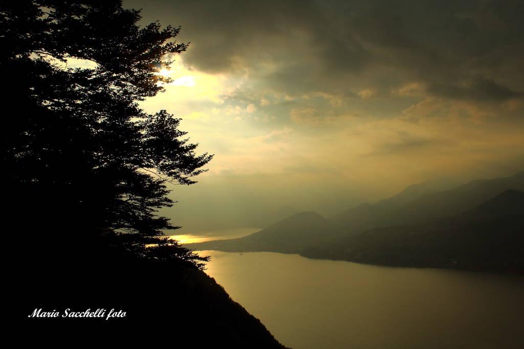 Contrasti di luce sul lago