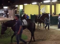 ippodromo Horse ambulance group