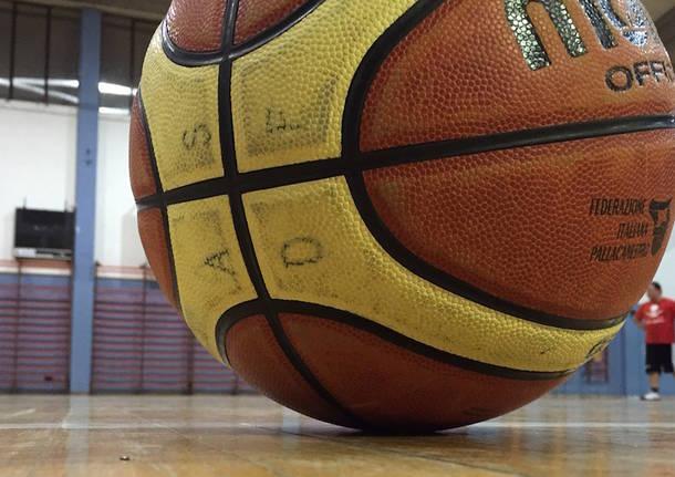 pallone basket molten pallacanestro