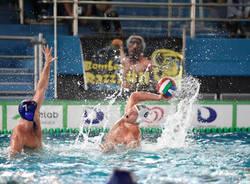 sport management rn savona pallanuoto serie a maschile