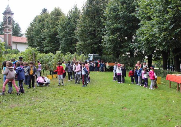Volontari e bambini per la vendemmia comunale