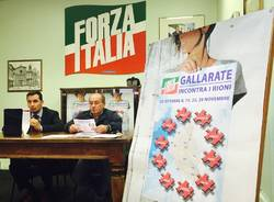 forza italia gallarate