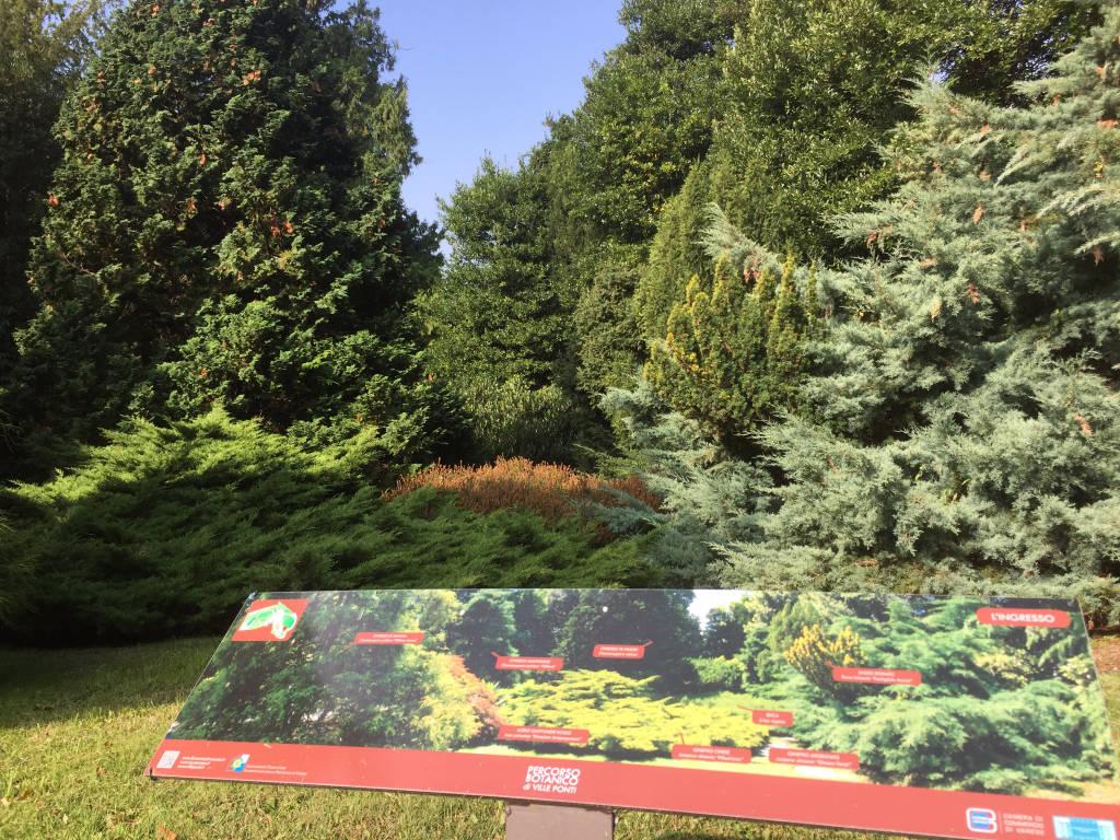 Il percorso botanico di Villa Ponti