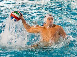 pallanuoto bpm sport management antonio petkovic