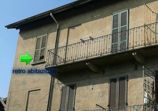 Troppi piccioni a Gazzada