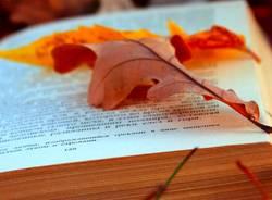 autunno letterario vedano olona