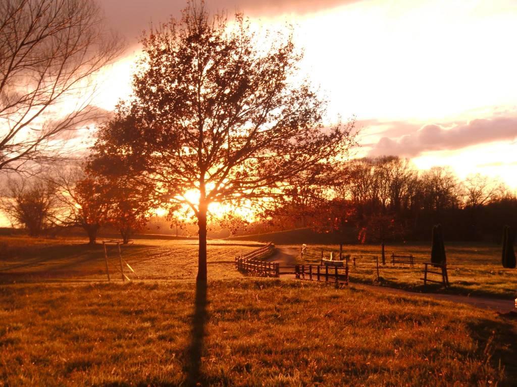 Un caldo tramonto a Vegonno (Azzate)