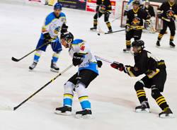 varese killer bees pregassona red fox hockey su ghiaccio