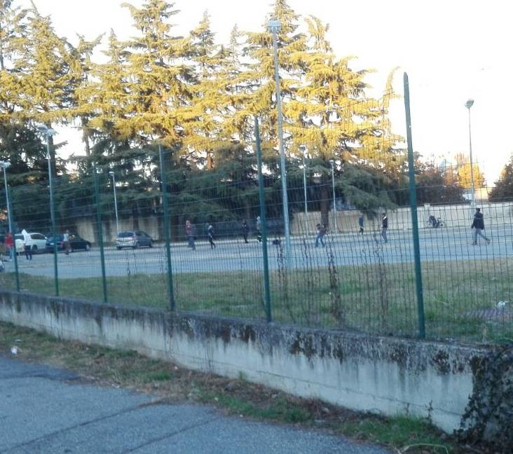 Gallarate cricket area mercato