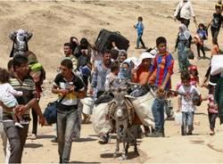 guerra profughi