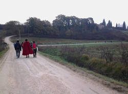 Via Francigena da Siena a San Quirico d'Orcia