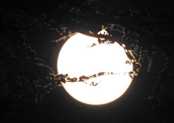 Luna piena ad Albizzate
