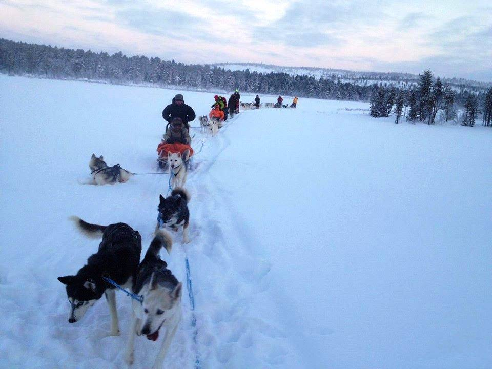 Viaggio in Finlandia - Norvegia - Estonia