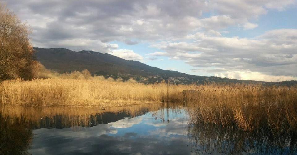 Un bacio tra lago e fiume
