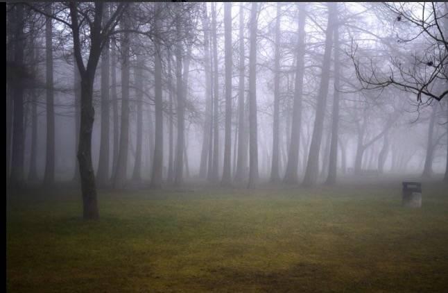 il fascino della nebbia al lago di Varese