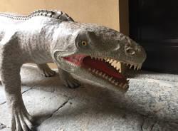 Il Museo dei Fossili di Besano