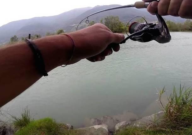 pesca trota febbraio 2016