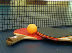 tennistavolo pingpong generiche