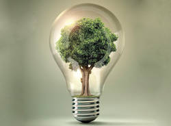 ambiente ecologia