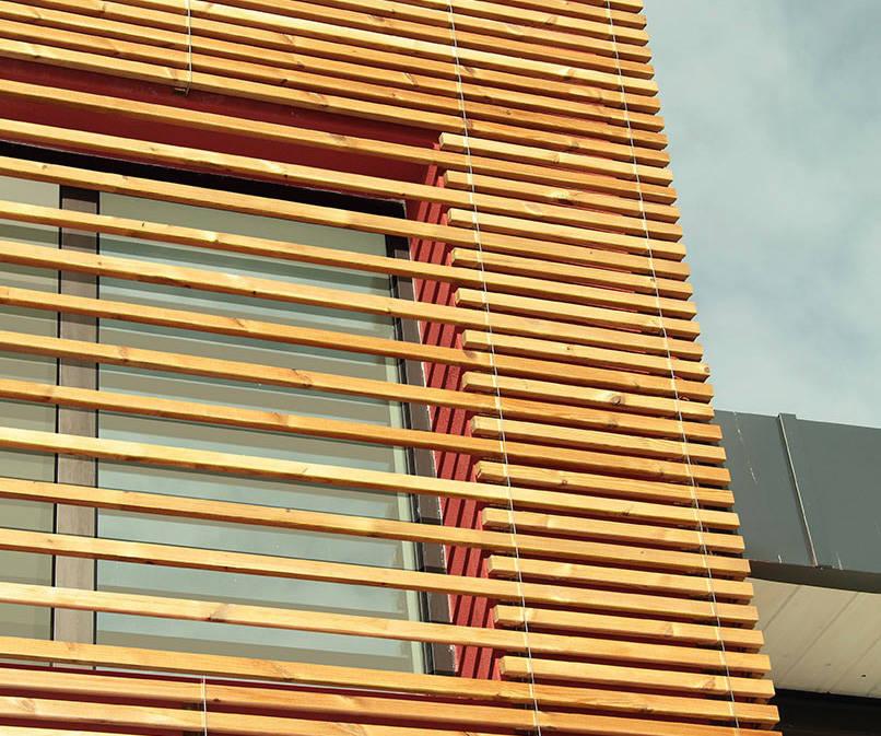 xilo1934 xilomoenia pareti in legno