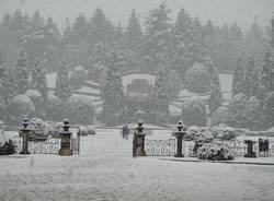 Un po\' di foto dai giardini Estensi