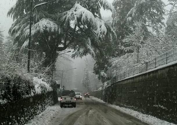 Neve a Gazzada Schianno